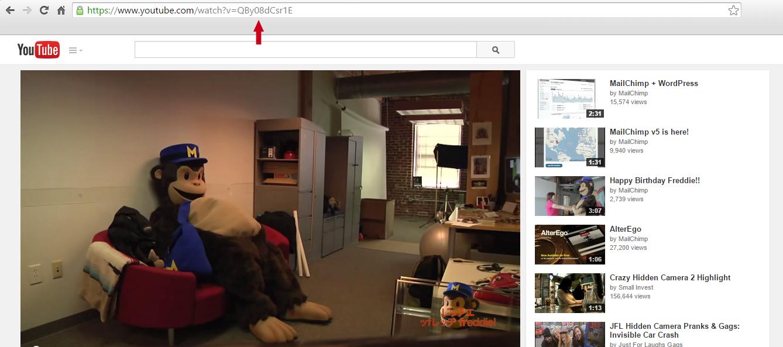 video-url-id-location